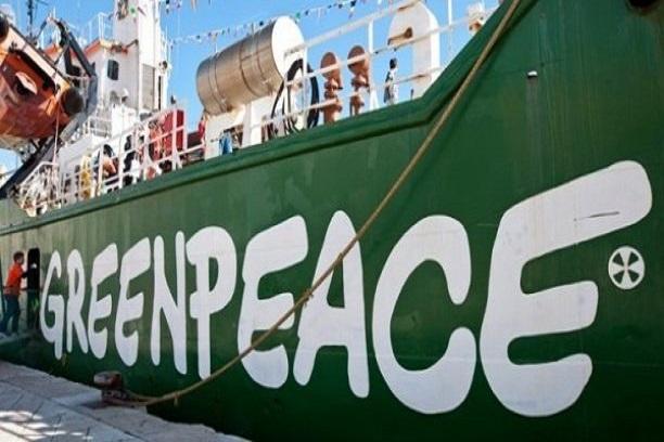 Usine de fabrication de farine de poisson à Sandiara et à Cayar: Greenpeace Afrique devrait informer juste et vrai…( Kadialy Gassama),