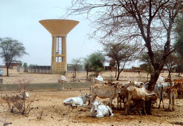 Hydraulique rurale: le Forum civil demande l'arbitrage du président de la République