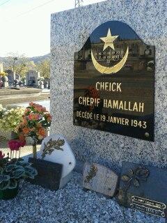 Cheikh Hamallah, un distingué guide de la Tidjaniya