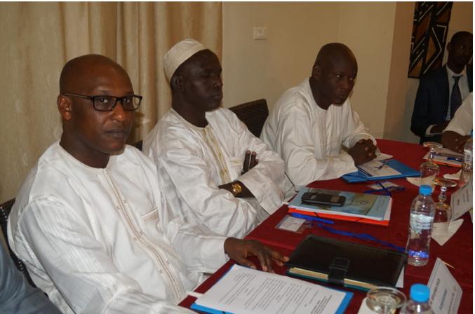 """Ibrahima Wade, Directeur général du Bos du Pse : """"14 sur les 27 projets du Pse sont en phase d'exécution"""""""