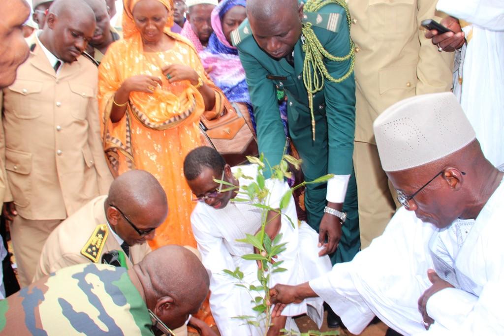 Journée nationale de l'arbre à Kanel : Daouda Dia invite la population à planter un arbre et à le suivre pour lui permettre de vivre