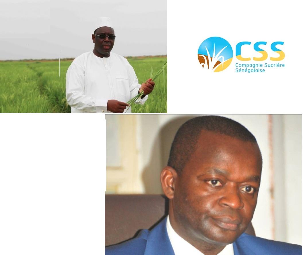 Levée du gel de l'importation du sucre : Macky prend le contre-pied d'Alioune Sarr