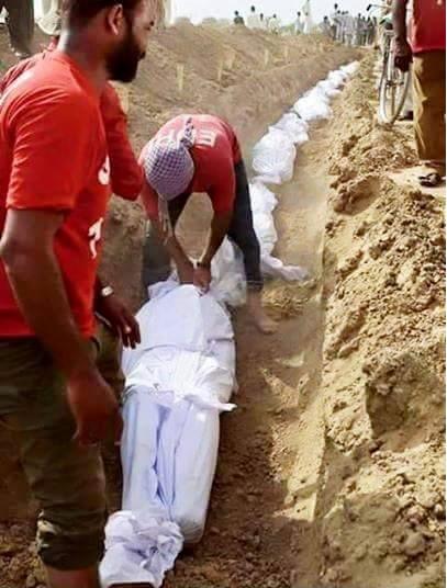 Génocide à Mouna ! (Par Cheikh Mbacké Guissé)