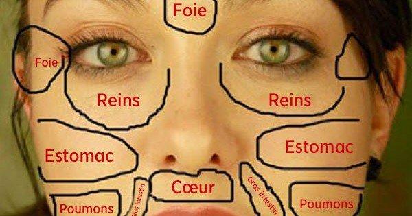 Vos problèmes de peaux sont des signaux de vos organes vitaux ! Découvrez lesquels...