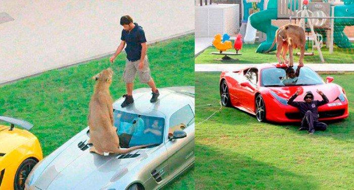 25 photos qui montrent l'absurdité de la richesse de Dubaï... Vous feriez bien un tour dans ma Lamborghini en or ?