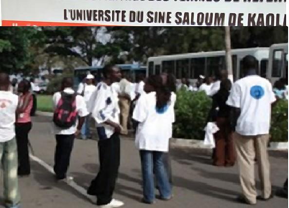 L'Université du Sine Saloum de Kaolack affûte ses armes : 25 familles de métiers identifiées pour les futurs étudiants