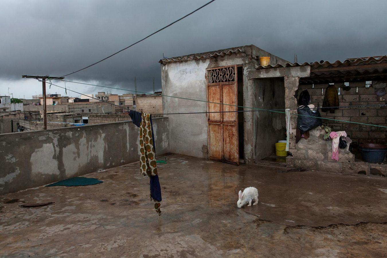 Les experts estiment qu'il faudra encore 5 ou 10 ans au gouvernement sénégalais pour régler les problèmes récurrents, comme les inondations, causés par le changement climatique. En 2013, Flurina Rothenberger, photographe suisse, a remporté un prix au Greenpeace Photo Award.