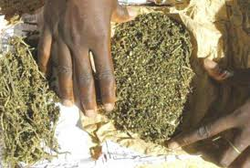 Trafic international de stupéfiants : 3 membres d'un réseau tombent avec 44 kg de chanvre indien