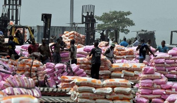 Le prix du kg de riz parfumé baisse de 2,2% en décembre 2015 au Sénégal