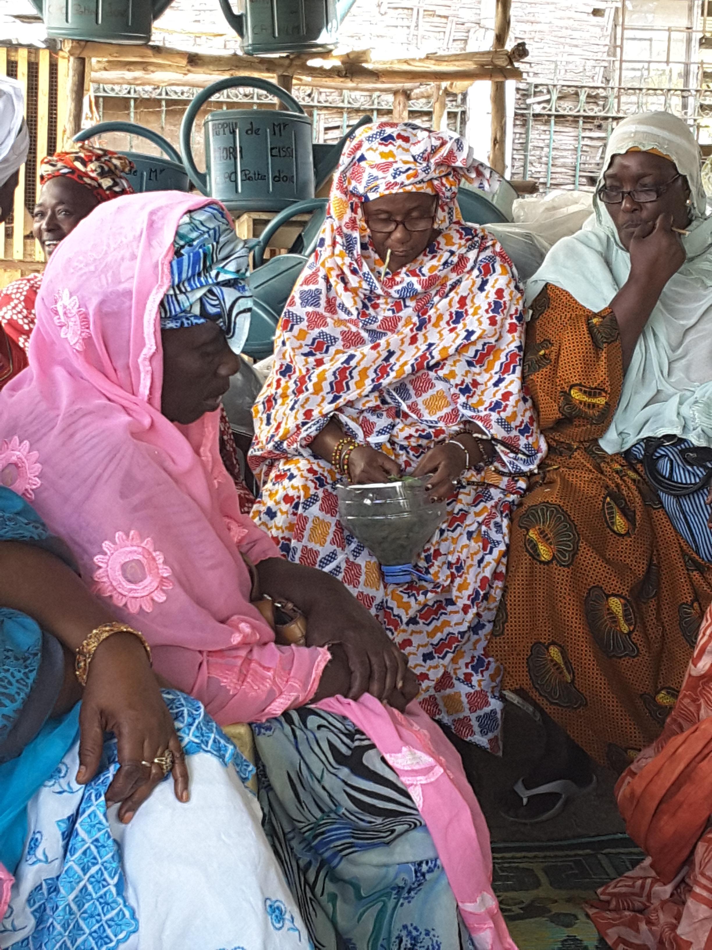 Soutien au micro-jardinage : Mora Cissé et Cheikh Bakhoum rament les femmes de Grand-Yoff