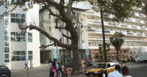 Immeuble Kébé : Une Française saute du 7e étage et meurt