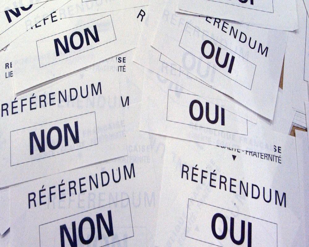 Référundum du 20 mars : La consigne de vote de la Communauté léboue va tomber dans 48 heures