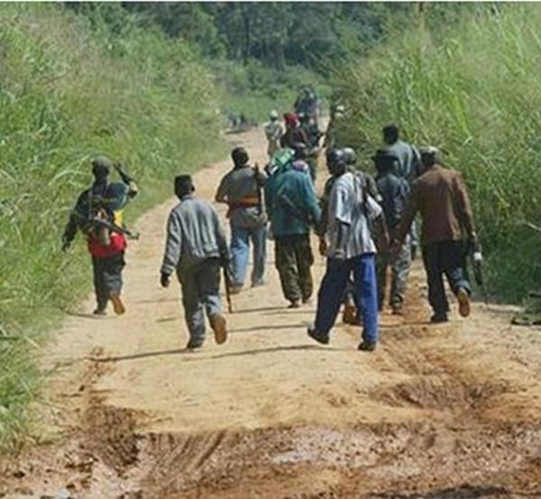 Sédhiou : Attaque à main armée dans un village de la commune de Niaga