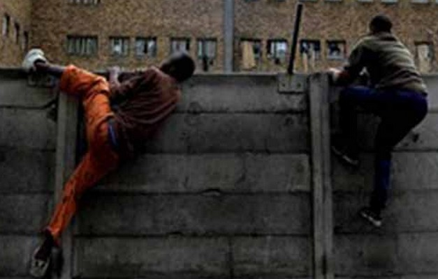Evasion à Koutal : « Deux Boy Djinné » dans la nature