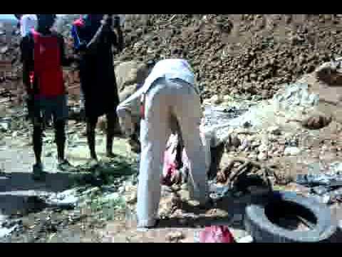 Dibiterie de Diofior : Le boucher arrêté pour vente de viande de charogne