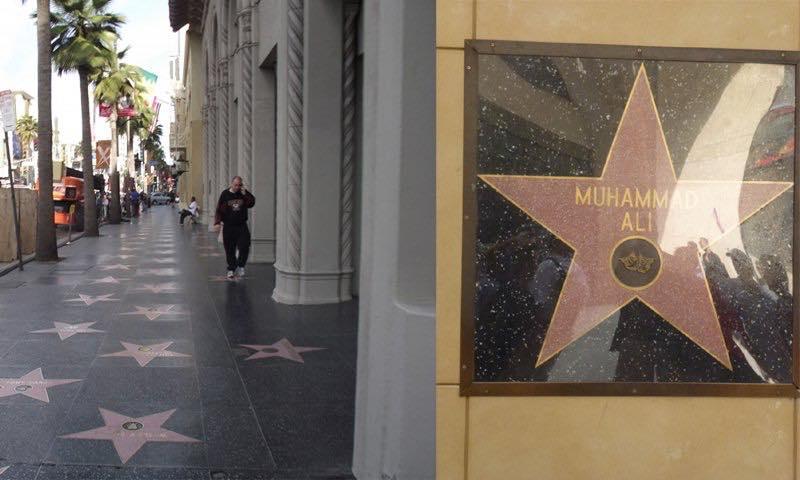 Découvrez la raison incroyable pour laquelle l'étoile de Mohamed Ali n'est pas sur le sol du Hollywood Boulevard