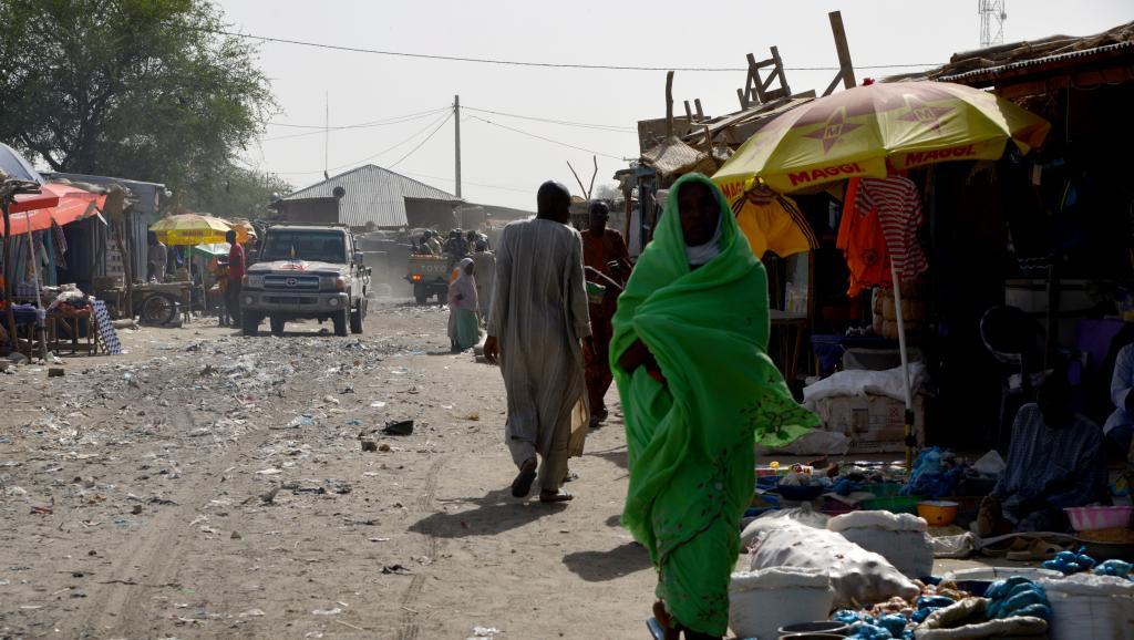 Attaque de Boko Haram à Bosso : le Tchad envoie des troupes au Niger