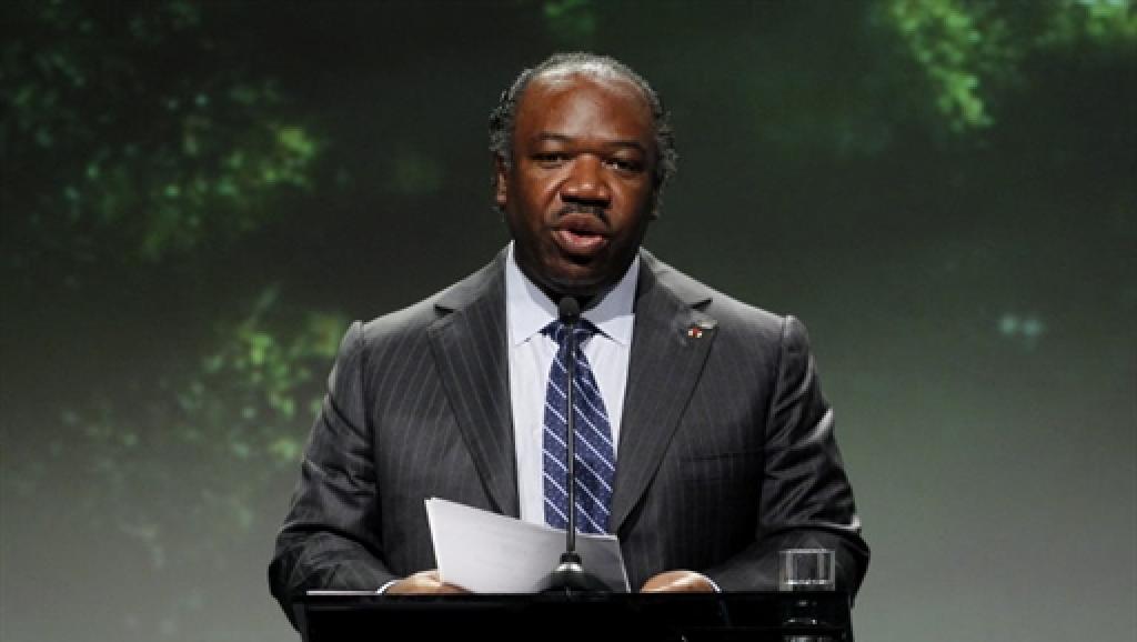 Gabon : Nouveau rebondissement dans l'histoire de la filiation d'Ali Bongo
