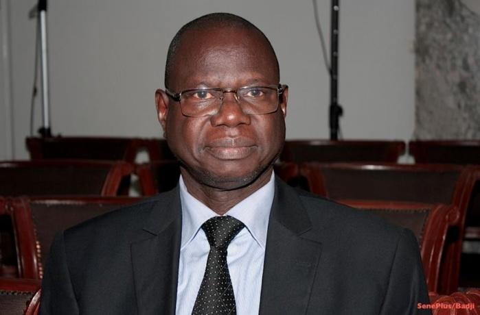 Kolda : Augustin Tine annonce une vaste opération contre les trafiquants de bois