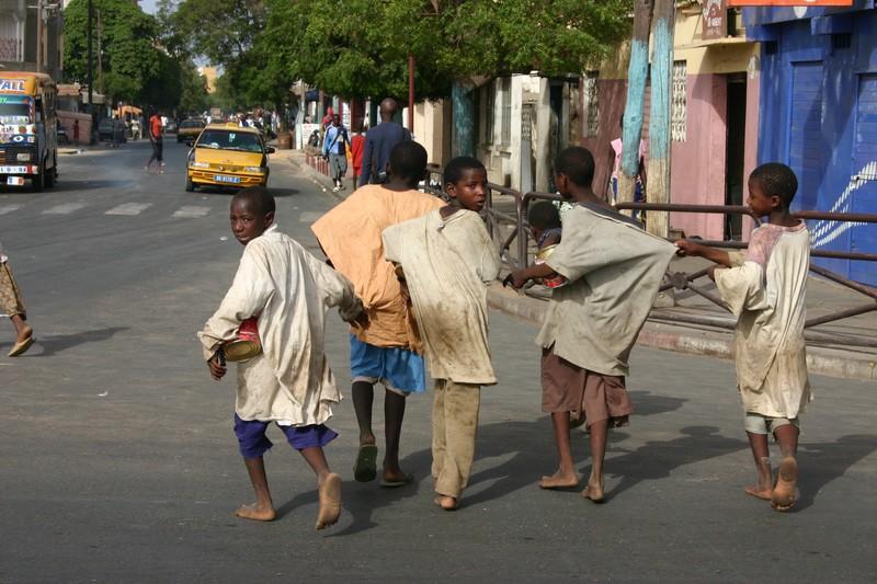 Retrait des enfants des rues : Les inquiétudes de Serigne Fallou Mbacké