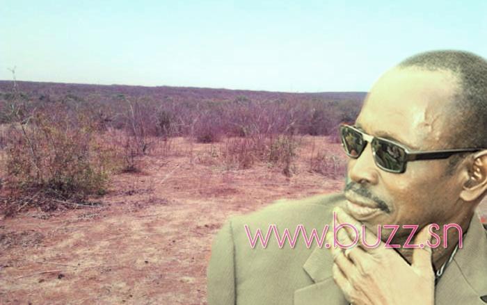 Diass : Encore un lotissement au parfum d'un deal à Boukhou, la population suffoque !