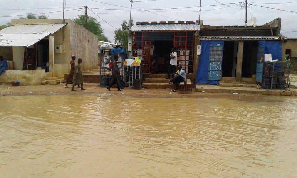 """Manque criant d'infrastructures : Le mouvement """"Tout va mal"""" de Matam interpelle les autorités"""