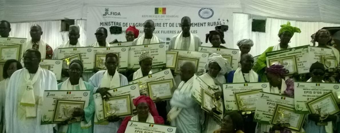 Soirée de partage des résultats du projet d'appui aux filières agricoles : Les meilleurs producteurs ont reçu des épis d'or