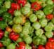 14 aliments qui vous permettront de vivre centenaire