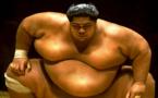 Les sumotoris, ces colosses aux pieds d'argile qui ingèrent en moyenne 5 000 calories par jour
