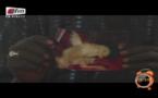Vidéo : Révélation trop mystérieuse : Béssel  Basse nous montre un coq avec 4 pattes