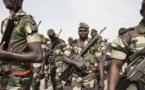 Des soldats de la force ouest-africaine accueillis comme de héros  en Gambie