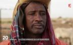 Importation du lait au Sénégal: Un cancer pour l'économie sénégalaise