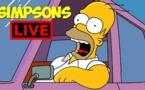 LES SIMPSON EN DIRECT LIVE