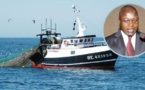 Oumar Guèye, ministre de la Pêche : «La pêche illégale fait perdre au Sénégal 150 milliards de F Cfa »