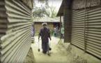 Depuis 48 ans, cet homme modeste dédie sa vie à la nature en plantant un arbre, chaque jour