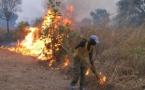 La destruction progressive de la couche d'ozone entraîne des impacts négatifs sur la santé humaine (Officiel)