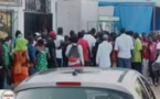 L'étau se resserre autour du meurtrier d'Awa Ndiaye : La police piste, dans Dakar un éleveur de pitbulls