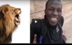 Patin et son Rendez-Vous avec les Lions du Parc Hann... A mourire de rire
