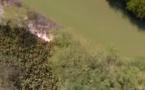 Top 5 des plus belles mangroves de Saint-Louis : le décor des berges du fleuve Sénégal et des cours d'eau