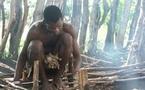Village de Ndoga Babacar : Un feu mystérieux continue de ravager la maison d'un sergent de l'armée sénégalaise