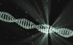 Des nanorobots capables de détruire les tumeurs cancéreuses en 48h