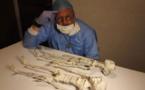 Les Momies de Nazca serait une nouvelle espèce humaine selon un chercheur