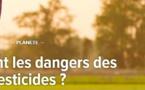 Science et environnement : Quels sont les dangers des pesticides ?