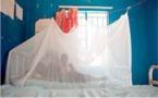 Lutte contre le paludisme : Dakar et Banjul vont distribuer 10 millions de MILDA