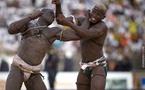 Un promoteur de lutte courtise des lutteurs pour des parties de jambes en l'air homosexuels