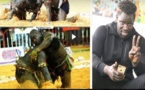 """VIDEO - Boy Niang : """"je n'ai pas posé mes fesses mais mon genou..."""" Revue de presse de l'Arène de ce 15 Juillet 2019"""