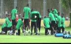 VIDEO - Finale CAN 2019: Galop d'entrainement des lions