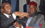 Dialogue national, affaire Pétro-Tim…Mamadou Lamine Diallo et Me Wade accordent leurs violons