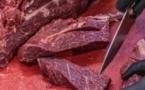 VIDEO - Alerte aux consommateurs: Attention à la viande de cheval !