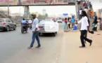 VIDEO - Le message de sensibilisation de Moussa Baye Fall pour préserver l'environnement